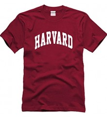 Koszulka t-shirt 'HARVARD' 3 KOLORY rozmiar XS-XXL